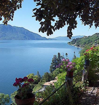 Vista lago 424x449